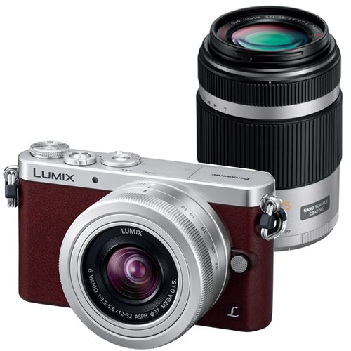 松下 LUMIX DMC-GM1SK-T 双镜头微单套机(12-32mm F3.5-5.6/45-175mm F4.0-5.6)